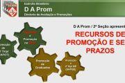 Recursos de Promoção e seus Prazos